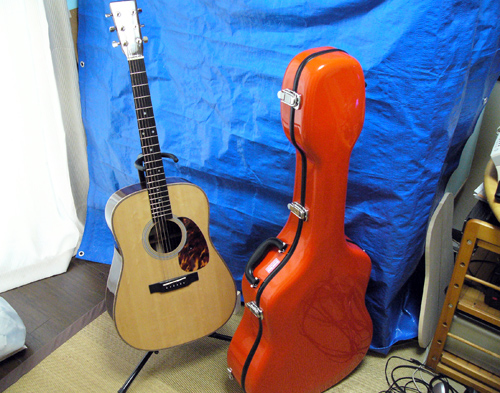 Grand Oply Guitar case