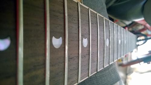 Luna Guitars Vicki Genfan SG フレット