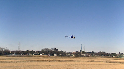 T-REX550L DOMINATOR お初飛行(画像)