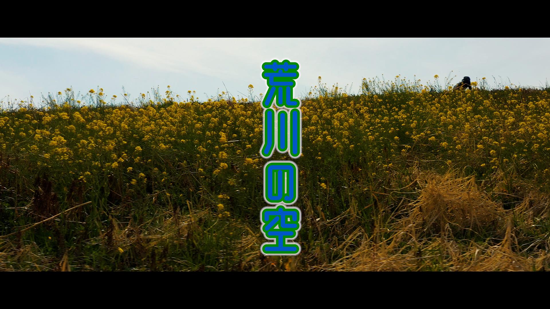 荒川の空 2021「春」- DJI Mavic2 Proで空撮